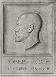 Koch, Robert