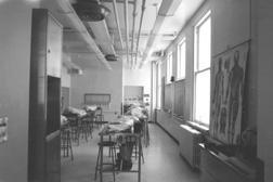 Anatomy Building
