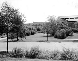 Dudley Field