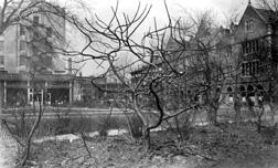 Ellis Hall
