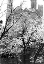 John J. Mitchell Tower