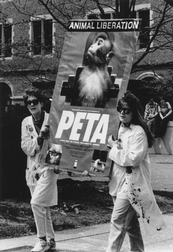 Animal Rights Demonstrations