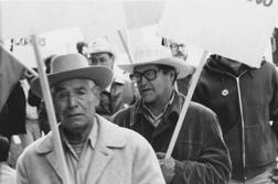 Farm Worker Demonstrations