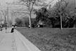 Hyde Park Neighborhood